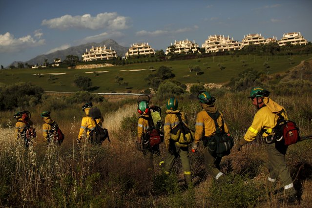Firefighters walk in a field after extinguishing a wildfire in Benahavis, southern Spain, May 19, 2015. (Photo by Jon Nazca/Reuters)
