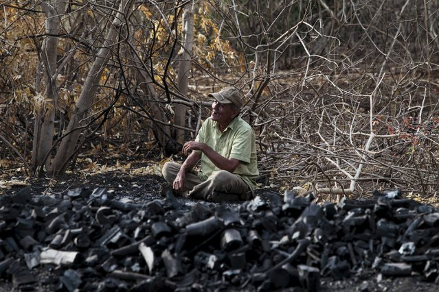 A labourer takes a break as he works at a traditional charcoal factory at a village in Nagarote town, Nicaragua, May 28, 2015. Around 300 families live off the sale of charcoal in this area located in the dry corridor of Nicaragua. Friday marks World Environment Day. Picture taken May 28, 2015. REUTERS/Oswaldo Rivas