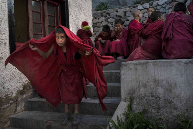 A young novice Buddhist monk puts on his robe after eating dinner at the Thiksey Monastery on May 7, 2014 in Thiksey, Ladakh, India. (Photo by Kevin Frayer/Getty Images)