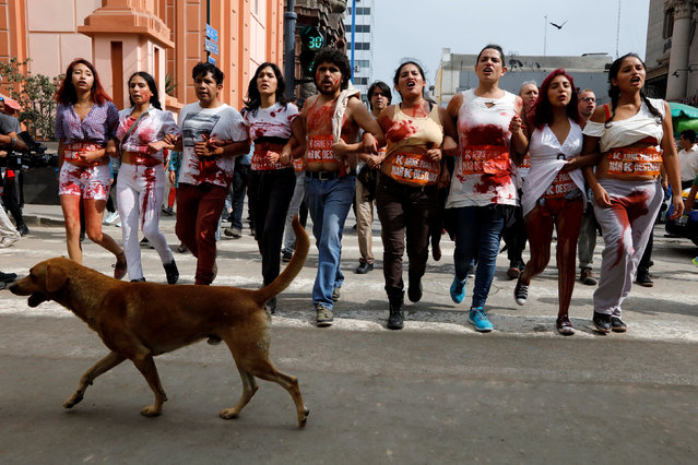 A dog walks next to activists who protest against Peruvian presidential candidate Keiko Fujimori at Jiron de la Union in Lima, Peru May 26, 2016. (Photo by Guadalupe Pardo/Reuters)