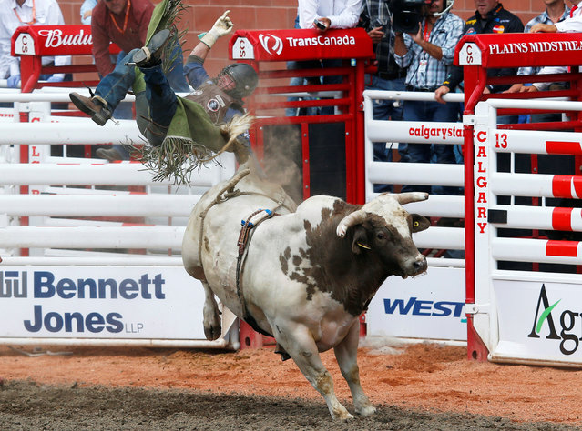 Tanner Girletz of Bowden, Alberta, gets thrown off the the bull Gangster Code in the bull riding event during the Calgary Stampede rodeo in Calgary, Alberta, Canada July 8, 2016. (Photo by Todd Korol/Reuters)