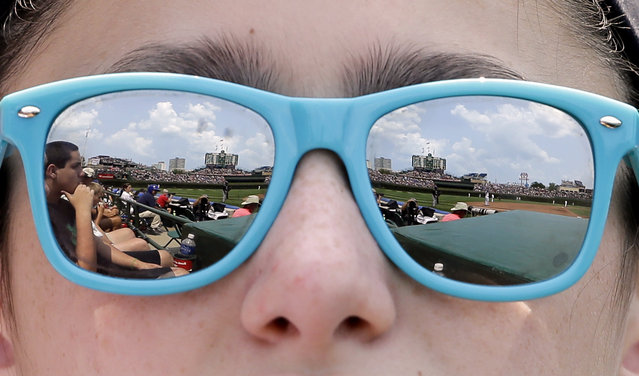A baseball fan watches a baseball game between the Colorado Rockies and the Chicago Cubs during the fourth inning in Chicago, Thursday, July 31, 2014. (Photo by Nam Y. Huh/AP Photo)