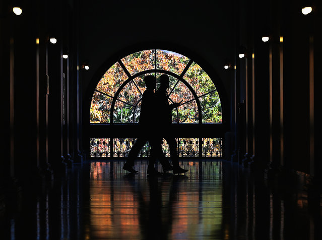 Capitol hill staff members walk past a window showing colorful fall leaves, inside the Russell Senate Office Building, November 12, 2014 in Washington, DC. Today Congress returned to work after their mid-term election break. (Photo by Mark Wilson/Getty Images)