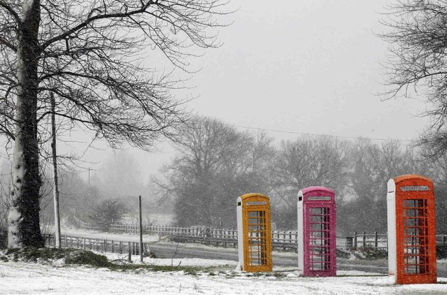 Snow sticks to the side of telephone boxes at a salvage yard near Nutts Corner in County Antrim, Northern Ireland March 22, 2013. Heavy snowfalls caused disruption across the country on Friday. (Photo by Cathal McNaughton/Reuters)