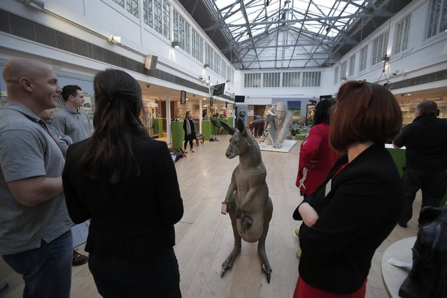 """People stand next to an early 20th century elastolin life-size model of a kangaroo is seen during a press preview of a themed auction that features the animal as artistic inspiration, entitled the """"Creatures Great and Small"""", in London, Monday, December 15, 2014. (Photo by Lefteris Pitarakis/AP Photo)"""