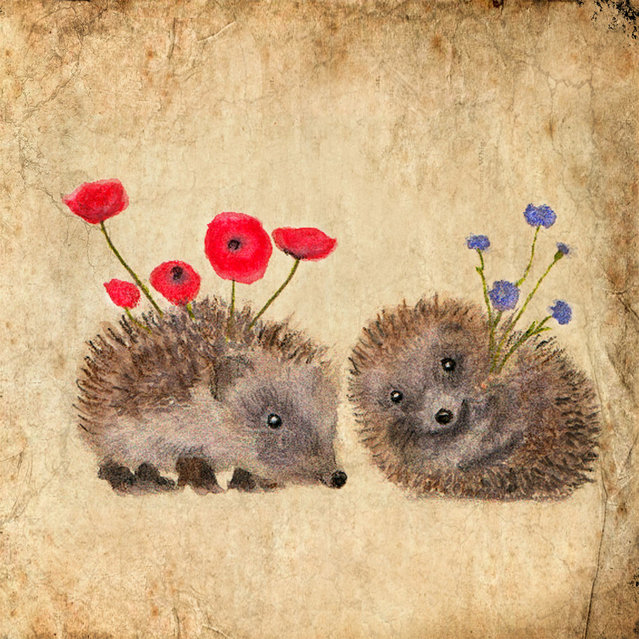 Cute Hedgehogs By Anne Boux