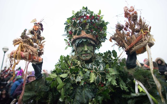 The Holly Man, a character from pagan myths and folklore, holds the crowns of the new King and Queen, during a performance in a folk play near the Globe Theatre  in central London on January 4, 2015, in celebration of Twelfth Night, marking the end of the twelve days of winter festivities. (Photo by Andrew Cowie/AFP Photo)