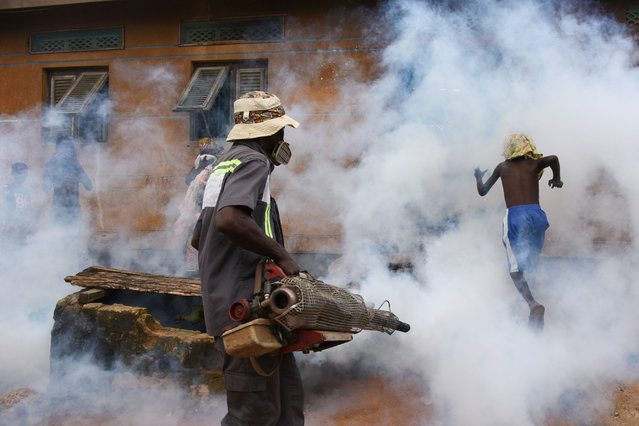 An agent of the National Institute of Public Hygene (INHP) carries out fumigation in the Anyama district of Abidjan on June 9, 2018 as part of the ongoing fight against dengue fever. In 2017, Ivory Coast was one of the West African states in which outbreaks of diseases such as Dengue were reported. (Photo by Sia Kambou/AFP Photo)