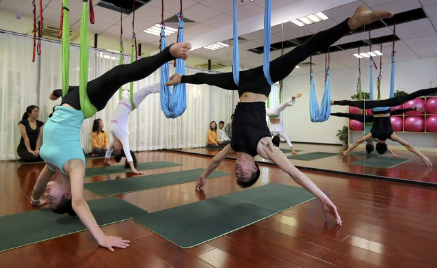 Students practice antigravity yoga at a training room in Hangzhou, Zhejiang province, January 11, 2015. The use of hammocks help practicers to release pressure from their spines and reshape their bodies, according to local media reports. (Photo by Reuters/Stringer)