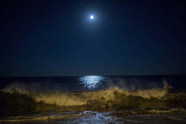Surf breaks as the moon makes its closest orbit to the Earth since 1948 on November 14, 2016 in Redondo Beach, California. The so-called supermoon appears up to 14 percent bigger and 30 percent brighter as it comes about 22,000 miles closer to the Earth than average, though to the casual observer, the increase appears slight. (Photo by David McNew/Getty Images)