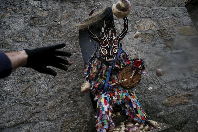 Revellers throw turnips at the Jarramplas, a character who wears a devil-like mask and a colourful costume, as he makes his way through the streets while beating his drum during the Jarramplas traditional festival in Piornal, southwestern Spain, January 20, 2016. (Photo by Susana Vera/Reuters)