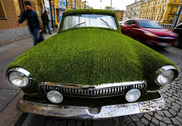 A customized Soviet-era Volga GAZ-21 vintage car covered by artificial grass to advertise for a dairy store  in St. Petersburg, Russia, on Oktober 17, 2013. (Photo by Alexander Demianchuk/Reuters)
