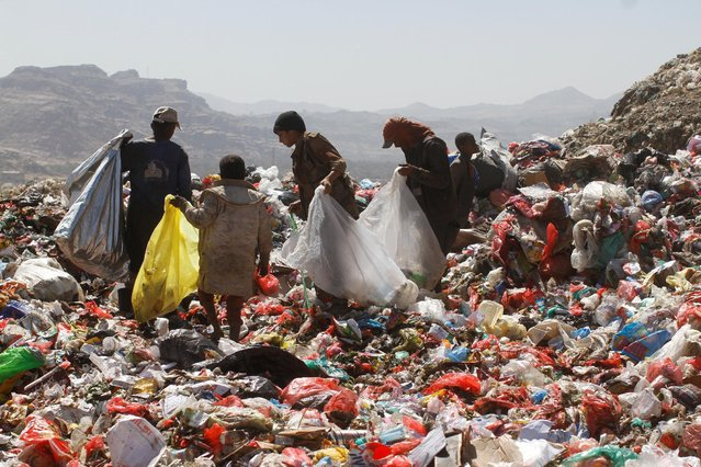 People collect recyclable items from piles of rubbish at a landfill site on the outskirts of Sanaa, Yemen November 16, 2016. (Photo by Mohamed al-Sayaghi/Reuters)