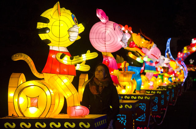 A woman poses for a photograph with light sculptures depicting animals that make up the twelve animals of the zodiac during a photocall to promote the Magical Lantern Festival at Chiswick House Gardens in west London on January 29, 2016. (Photo by Justin Tallis/AFP Photo)
