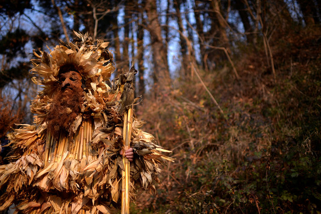 """A man dressed in a costume made out of sticks and leaves takes part in """"La Vijanera"""", a winter masquerade at the beginning of carnival season in Europe, in Silio, northern Spain, January 8, 2017. (Photo by Vincent West/Reuters)"""