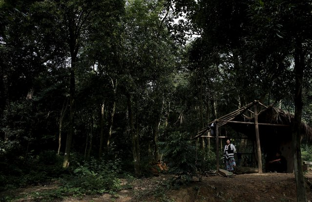 Guarani Indian woman stands at a new house under construction in the village of Itakupe at Jaragua district, in Sao Paulo April 30, 2015. (Photo by Nacho Doce/Reuters)