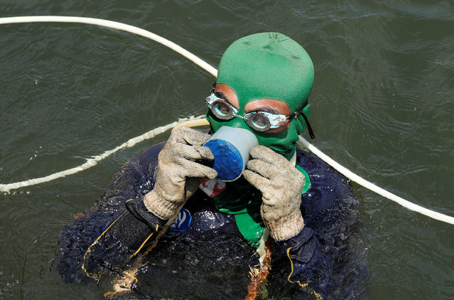 A fisherman collecting green mussels uses a homemade breathing device in the Bay of Jakarta, Indonesia, April 11, 2016. (Photo by Reuters/Beawiharta)