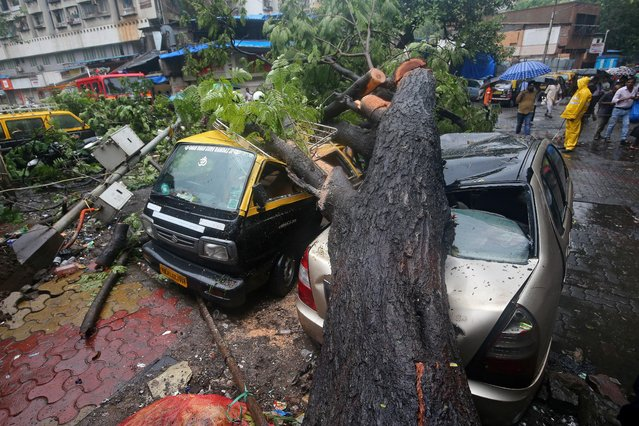 People stand next to cars damaged by a fallen tree after heavy rain in Mumbai, June 29, 2019. (Photo by Francis Mascarenhas/Reuters)