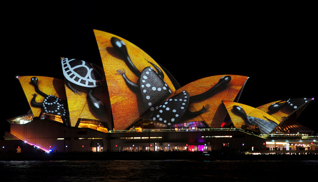 A design featuring decorative turtles is projected onto the sails of the Sydney Opera House during the opening night of the annual Vivid Sydney light festival in Sydney, Australia May 27, 2016. (Photo by Jason Reed/Reuters)