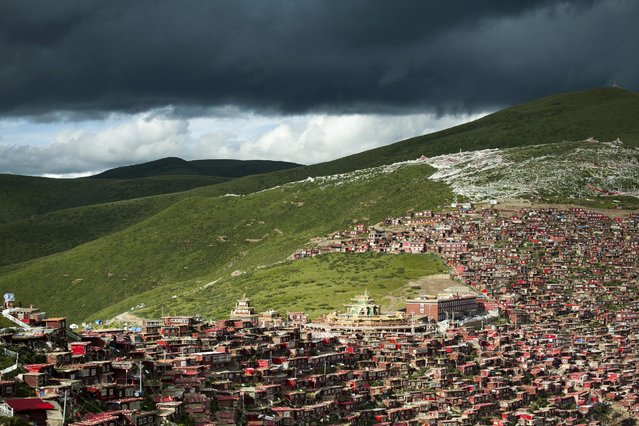 A view shows the settlements of Larung Gar Buddhist Academy in Sertar County of Garze Tibetan Autonomous Prefecture, Sichuan province, China, July 23, 2015. (Photo by Reuters/Stringer)
