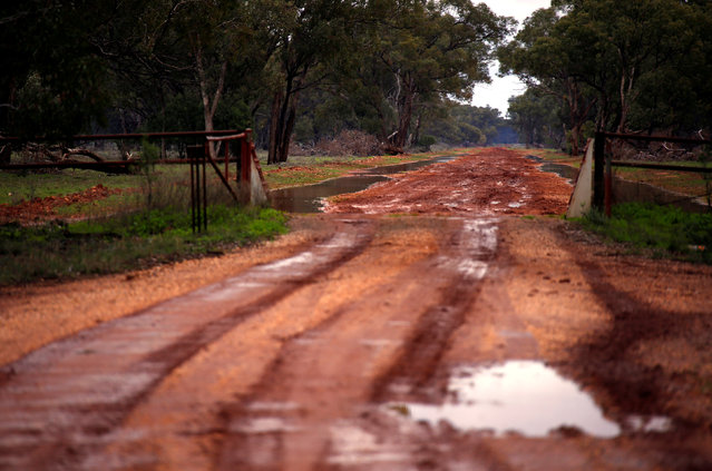A flooded dirt road is seen near the western New South Wales outback town of Bourke, Australia, June 23, 2016. (Photo by David Gray/Reuters)