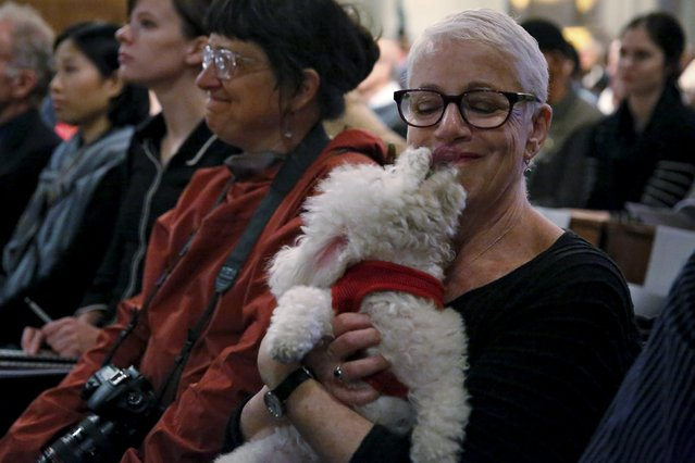 Marion Kahan and dog, Tink, attend the 31st annual Feast of Saint Francis and Blessing of the Animals at The Cathedral of St. John the Divine in the Manhattan borough of New York on October 4, 2015. (Photo by Elizabeth Shafiroff/Reuters)