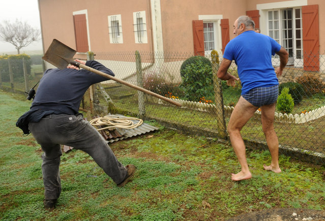 A militant of the Bird Protection league (LPO) (L) is hit by a spade thrown by the owner of a plot where bird traps were found during an action against finch poaching, on November 9, 2015 in Audon, south western France. (Photo by Gaizka Iroz/AFP Photo)