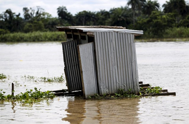 A toilet floats on the river Nun near Yenagoa, Bayelsa state in Nigeria's delta region October 8, 2015. (Photo by Akintunde Akinleye/Reuters)