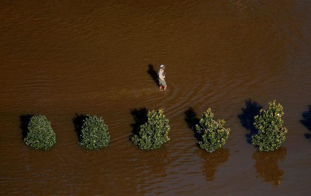 A man walks through flood waters after Hurricane Matthew in Lumberton, North Carolina October 10, 2016. (Photo by Chris Keane/Reuters)