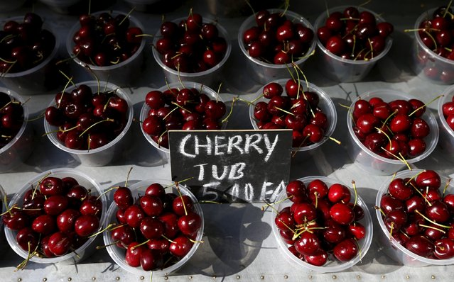 Cherry packs are sold at A$ 5 ($4.45), at a fruit store in central Sydney in this August 5, 2013 file photo. Australia si expected to release retail sales data this week. (Photo by Daniel Munoz/Reuters)