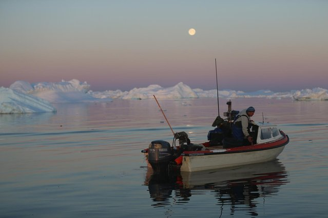 Fisherman, Inunnguaq Petersen, waits for fish to catch on the line he put out near icebergs that broke off from the Jakobshavn Glacier on July 23, 2013 in Ilulissat, Greenland. (Photo by Joe Raedle/Getty Images via The Atlantic)
