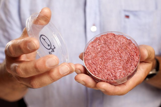 In this handout image provided by Ogilvy, a burger made from cultured beef, which has been developed by Professor Mark Post of Maastricht University in the Netherlands is shown to the media during a press conference on August 5, 2013 in London, England. Cultured Beef could help solve the coming food crisis and combat climate change with commercial production of Cultured Beef beginning within ten to twenty years. (Photo by David Parry via Getty Images)