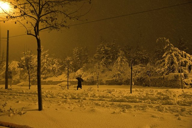 A pedestrian walks on a snow-covered street early morning in Jerusalem February 20, 2015. (Photo by Ronen Zvulun/Reuters)