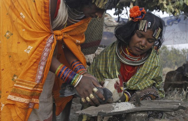 Members of India's Dongria tribe offer grains to birds before they are sacrificed during the two-day long Niyamraja Festival atop the Niyamgiri hills near Lanjigarh in Kalahandi district, Orissa state, India, Sunday, February 22, 2015. (Photo by Biswaranjan Rout/AP Photo)