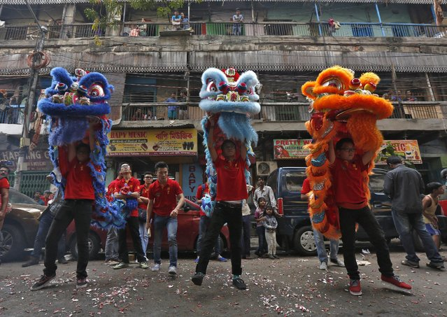Members of the Chinese community perform a lion dance as they take part in the celebrations to mark the Chinese New Year in Kolkata, India, February 8, 2016. (Photo by Rupak De Chowdhuri/Reuters)
