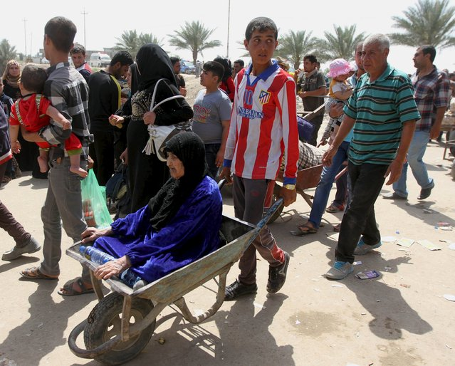 A woman is transported in a wheelbarrow as displaced Sunni people, who fled the violence in the city of Ramadi, arrive at the outskirts of Baghdad, April 18, 2015. (Photo by Reuters/Stringer)