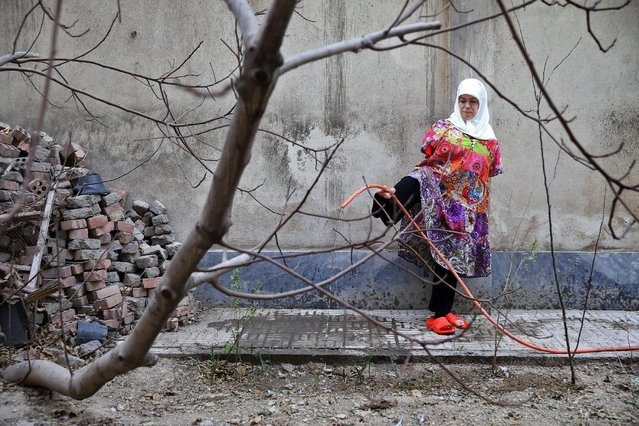 """In this picture taken on Thursday, January 28, 2015, Zohreh Etezadossaltaneh, who was born without arms, waters her garden by holding the hose with her foot in Tehran, Iran. """"Each body might have some limitations and deficiencies. But if you have a pure, elevated soul I think the body won't matter"""", she said. (Photo by Ebrahim Noroozi/AP Photo)"""