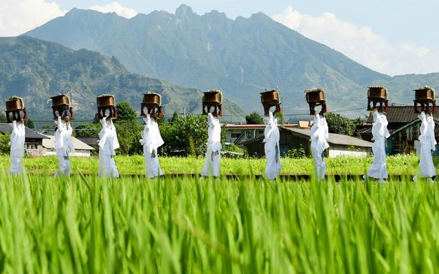 """""""Unari"""", women in white clothes carrying meals for gods, march among rice paddy during the Onda Festival at Aso Shrine on July 28, 2019 in Aso, Kumamoto, Japan. The festival is a ritual that gods inspect the growth of rice. (Photo by The Asahi Shimbun via Getty Images)"""