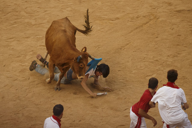 A reveler is tossed by a cow during a celebration held at the bullring after the running of the bulls of the San Fermin festival in Pamplona, Spain, Tuesday, July 7, 2015. (Photo by aniel Ochoa de Olza/AP Photo)
