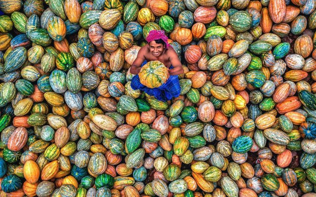 Hundreds of colourful pumpkins and squash create an extraordinary rainbow scene at a vegetable wholesale market in Bangladesh on August 1, 2019. A seller sits among his vibrant wares which are produced by farmers from local villages. (Photo by Abdul Momin/Solent News)