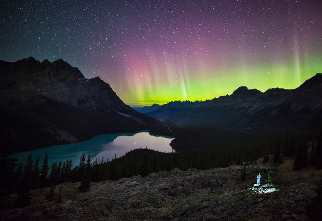"Paul Zizka in ""Witness"", Peyto Lake, Banff National Park, August 31, 2013. (Photo by Paul Zizka/Caters News)"
