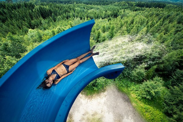 """The Forestslide"". (John Wilhelm)"