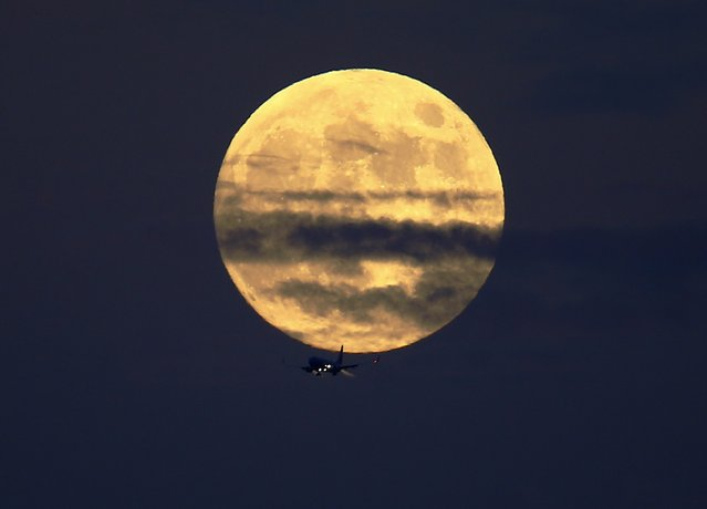 A commercial airliner crosses the path of a rising full moon as it comes in to land at Lindberg Field in San Diego, California October 7, 2014. (Photo by Mike Blake/Reuters)