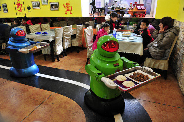 Robots deliver dishes to customers at a Robot Restaurant in Harbin, Heilongjiang province January 12, 2013. Opened in June 2012, the restaurant has gained fame in using a total of 20 robots, which range in heights of 1.3-1.6 metres (4.27-5.25 ft), to cook meals and deliver dishes. The robots can work continuously for five hours after a two-hour charge, and are able to display over 10 expressions on their faces and say basic welcoming sentences to customers, local media reported. (Photo by Sheng Li/Reuters)