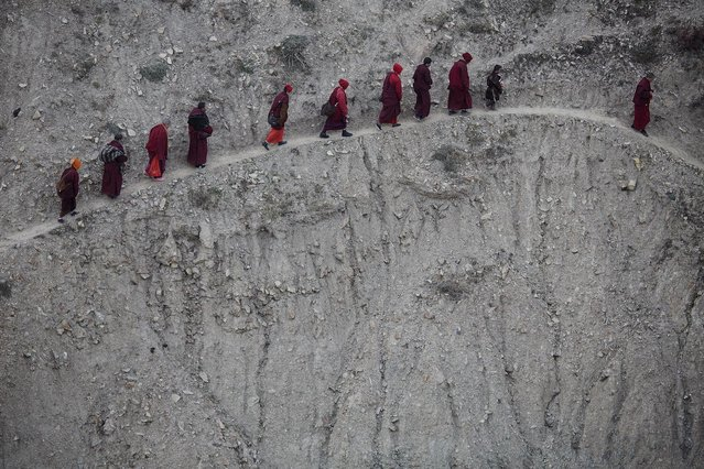 Monks and nuns walk across a steep hill back to their dormitory after attending a daily chanting session during the Utmost Bliss Dharma Assembly, the last of the four Dharma assemblies at Larung Wuming Buddhist Institute in remote Sertar county, Garze Tibetan Autonomous Prefecture, Sichuan province, China early November 1, 2015. (Photo by Damir Sagolj/Reuters)