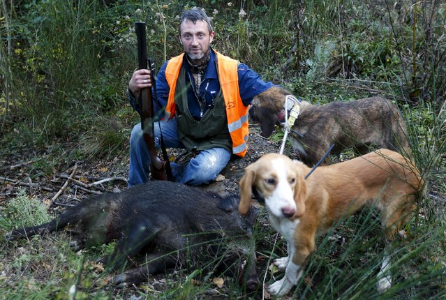 Tommaso Gaggi poses with his dogs and a dead wild boar during an hunt in Castell'Azzara, Tuscany, central Italy, November 1, 2015. Extinct across much of the country by the end of the 1800s, the number of wild boar in Italy has almost doubled over the past decade and there are now about a million roaming the country, environmental and agricultural associations say. (Photo by Max Rossi/Reuters)