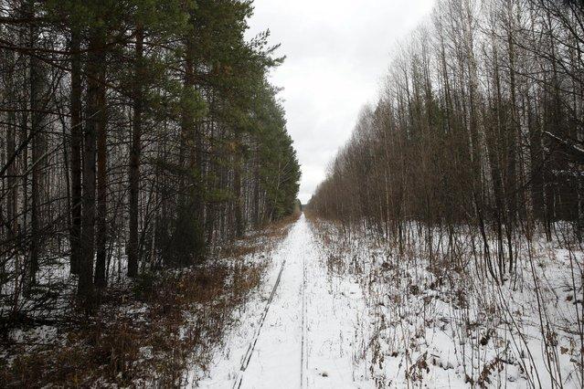 Snow lies on railway tracks near Sankin in Sverdlovsk region, Russia October 18, 2015. (Photo by Maxim Zmeyev/Reuters)