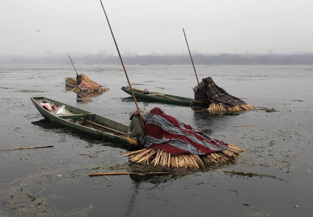 Kashmiri fishermen cover their heads and part of their boats with blankets and straw as they wait to catch fish in the waters of the Anchar Lake on a cold winter day in Srinagar December 30, 2014. The fishermen use the blankets and straw to prevent light from entering through the water, which according to them helps in the catching of fish. (Photo by Danish Ismail/Reuters)