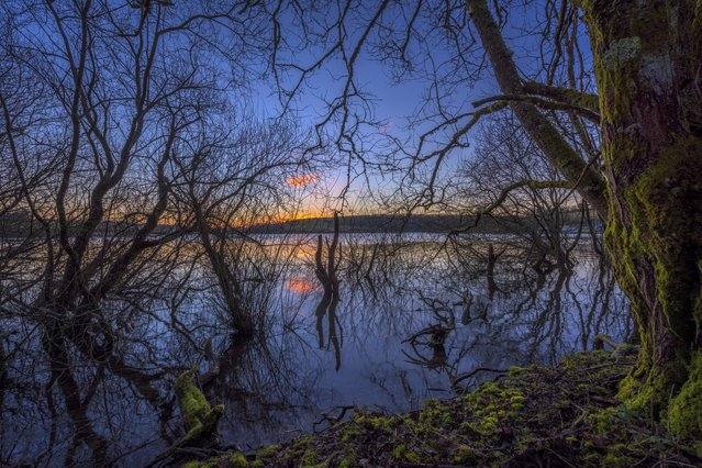 A majestic sunrise over Wimblewall Lake in Dulverton on January 30, 2015 in Somerset, England. Wimblewall lake, which is  is currently experiencing high water levels, is a favourite spot for anglers and water sports enthusiasts. (Photo by Vistaphotography/Barcroft UK Office)