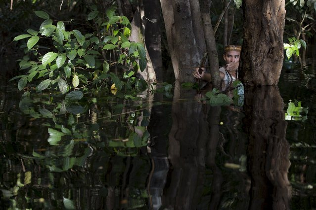 Kambeba Indian, Dream Braga, 18, aims his arrow in a jungle near the village Tres Unidos, Amazon state, Brazil May 9, 2015. (Photo by Bruno Kelly/Reuters)